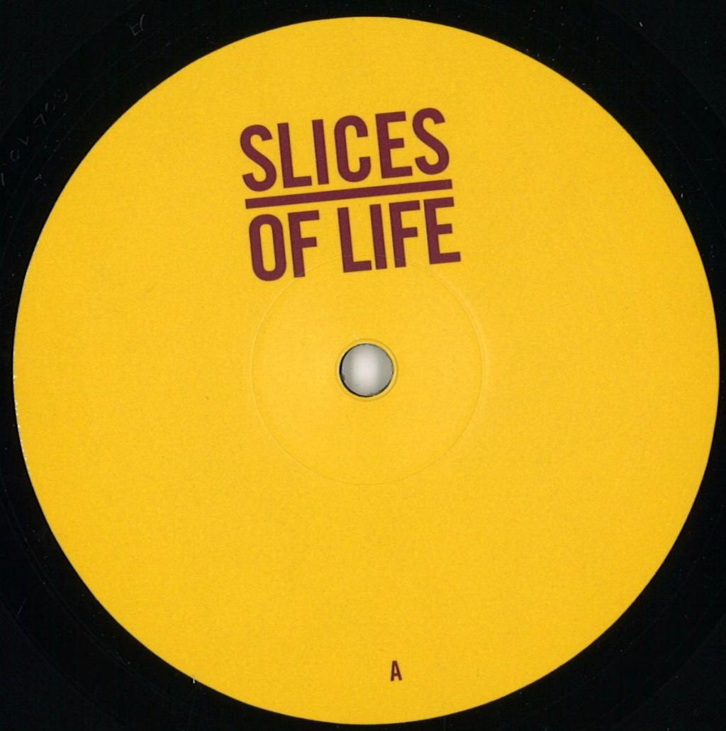 "( SOL 10.1 ) The MOLE / BAAZ / DANA RUH / JOHN TEJADA - Slices Of Life 10.1 (12"") - Slices Of Life Germany"