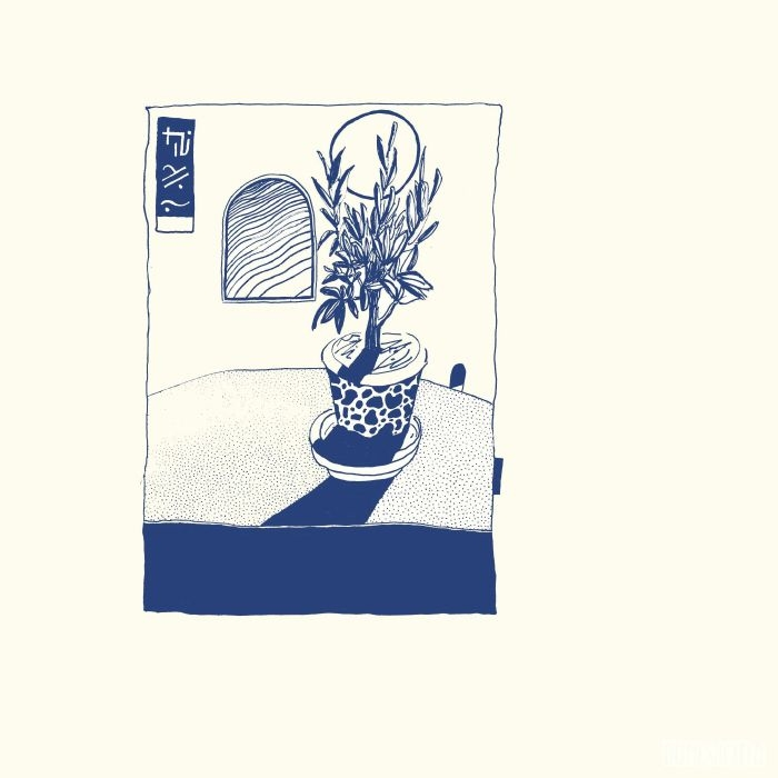 """( DOMESTICATED 01 ) ASPER BOTHROPS - Domesticated EP (12"""") Domesticated Germany"""