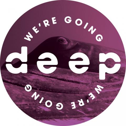 "( WGD 004 ) VARIOUS ARTISTS - Volume 4 ( 12"" vinyl ) We're Going Deep"