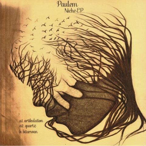 "(  VSA 005 )  PAULEM - Niche EP (12"") Vinyl Speed Adjust Germany"