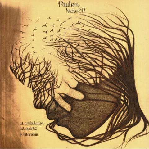"(  VSA 005 )  PAULEM - Niche EP (12"") Vinyl Speed Adjust Germany"