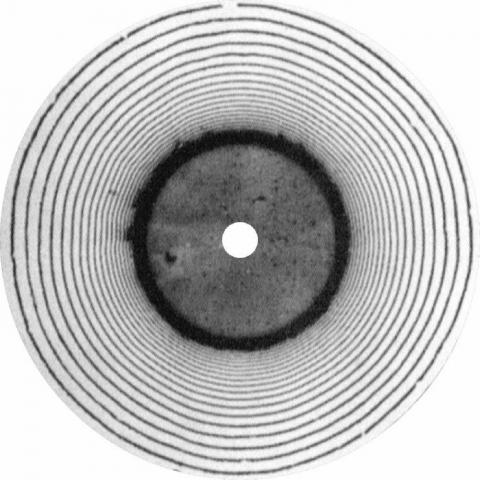 """( HOER 003 )  Bob WALTNER - Tale Of Nutstreet EP (12"""") Einfach Horen Germany"""