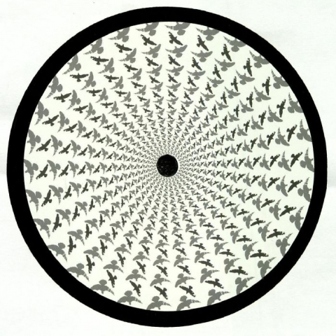 "( FUSE 034 )  RICH NXT - Hard To Be EP (12"") Fuse London"
