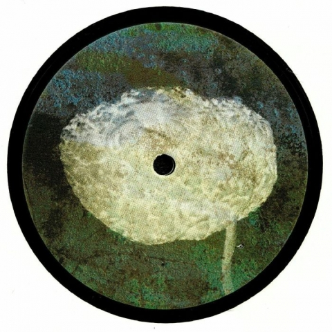 "( CAIMRECORDS 001 ) CAIM - Flaneur (heavyweight vinyl 12"") Caim Holland"