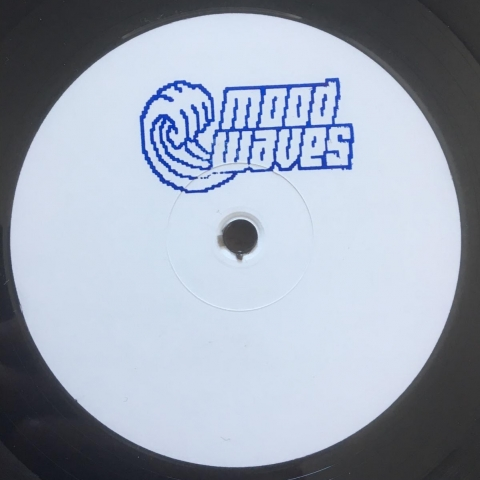 "( MW 001 ) GIAMMARCO ORSINI & JACOPO LATINI pres. Data Memory Access - The Experience Ep (vinyl 12"") Mood Waves"