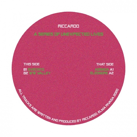 "( EMRVG 003 ) RICCARDO - A Series of Unexpected Lives (12"") Elma Rivaga"