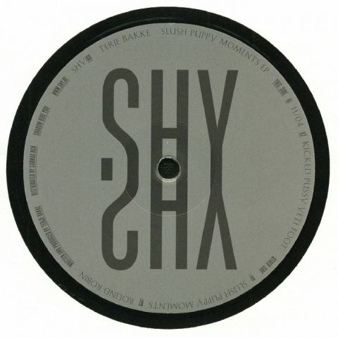 "( SHY 180 ) Terje BAKKE - Slush Puppy Moments EP (12"") Shadow Hide You"