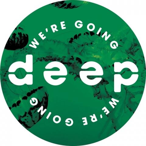 """( WGD 003 ) MOY / REKAB / GARRETT DAVID / MOODY WATERS - Volume 3 (12"""") We're Going Deep"""