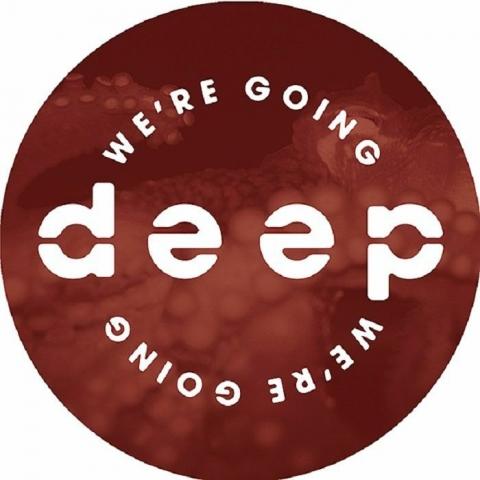 "( WGD 002 ) CIGNOL / ARMEC / JARED WILSON / GILBERT - Volume 2 (12"") We're Going Deep"