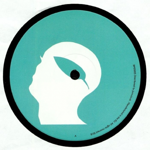 "( BMSS 005 ) UNKNOWN - Botanic Minds Sunset Series (Cosmjn Remix) (limited 180 gram vinyl 12"") - Botanic Minds"