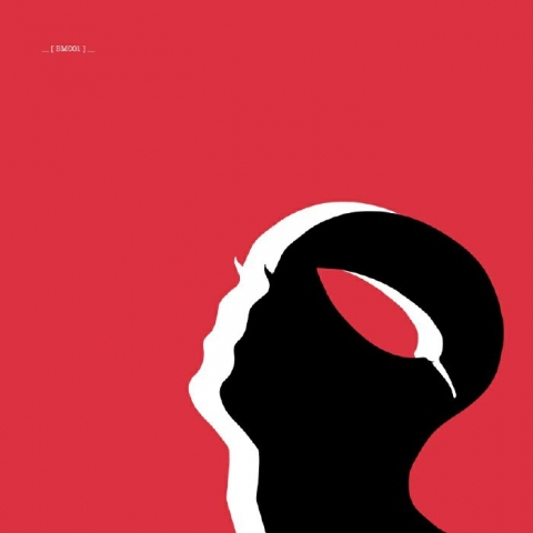 """( BM 001 ) ROWLANZ / KEVIN COOK - Dots Pantry EP - feat Mierea Dor Remix ( 180 gram vinyl 12"""" ) Botanic Minds"""