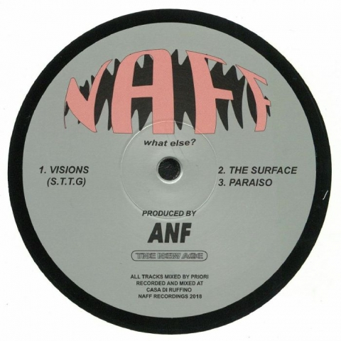 "( NAFF 002 ) ANF - Visions (12"") Naff Canada"