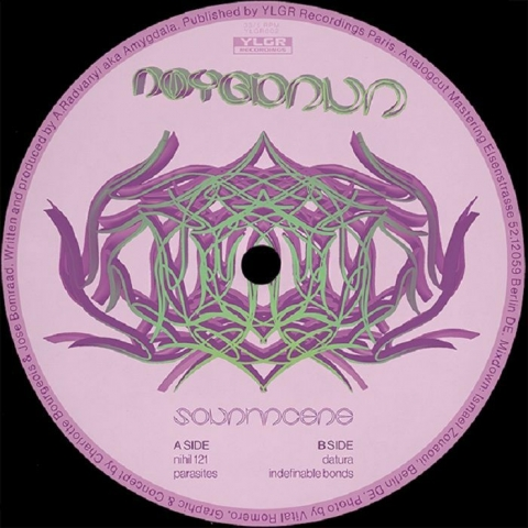 """( YLGR 002 ) AMYGDALA - Solanaceae (12"""") YLGR Recordings"""