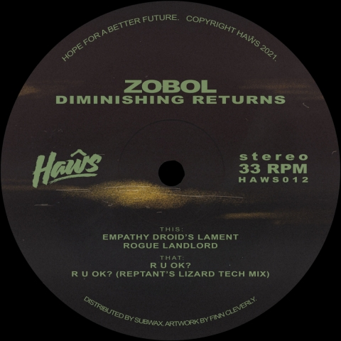 "( HAWS 012 )  Zobol - Diminishing Returns (Incl. Reptant Remix)  - 12"" Vinyl - Haŵs"