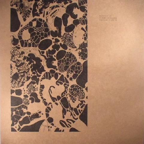 ( ARPIAR 015 ) Ricardo VILLALOBOS - Empirical House LP (heavyweight vinyl 2xLP) (1 per customer) A:rpia:r Romania